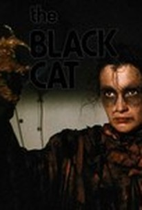 Il gatto nero (Demons 6: De Profundis) (Demons 6: Armagedon) (Dead Eyes) (The Black Cat)