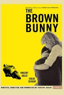 Brown bunny final scene real