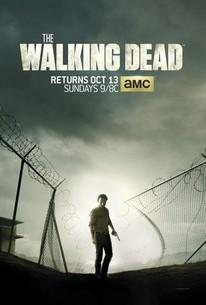 The Walking Dead: Season 4 - Rotten Tomatoes