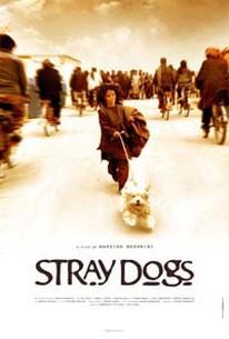 Stray Dogs (Sag-haye velgard)