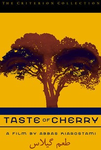 Taste of Cherry (Ta'm e Guilass)