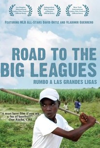 Rumbo a Las Grandes Ligas (Road to the Big Leagues)