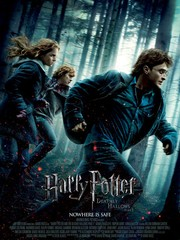 Harry Potter and the Deathly Hallows - Part 1 (2010)