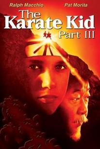 free download karate kid movie in hindi hd