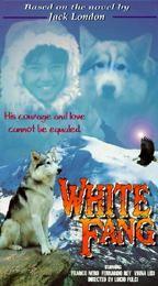 White Fang (Zanna Bianca)