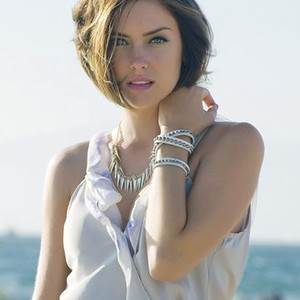 Jessica Stroup as Erin Silver