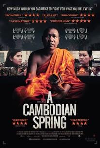 a cambodian
