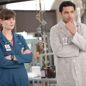 Bones Season 6 Episode 21 Rotten Tomatoes