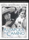 Amapola Del Camino