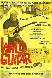 Image result for wild guitar
