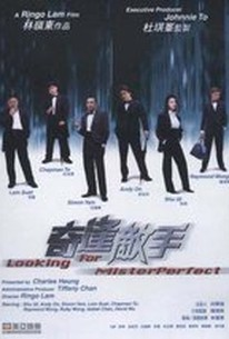 Kei fung dik sau (Qi feng di shou) (Looking For Mr. Perfect) (Finding Mr. Perfect)