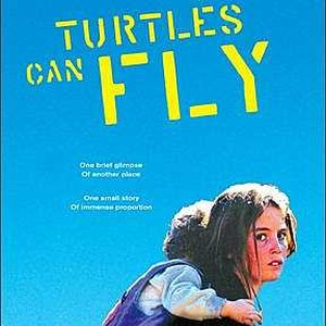 turtles can fly Turtles can fly (98 minutes, in kurdish with subtitles, at landmark bethesda row and e street) is not rated it contains disturbing images of violence and.
