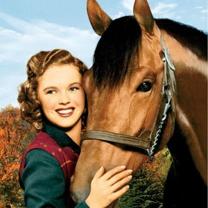 seabiscuit movie review