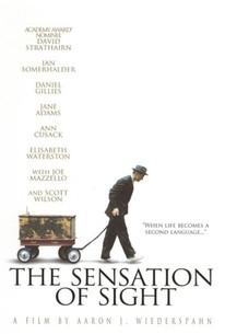 The Sensation of Sight