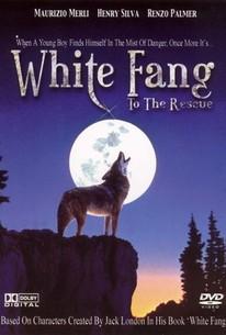 White Fang to the Rescue (Zanna bianca alla riscossa)