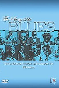 Story of The Blues - From Blind Lemon to B.B. King