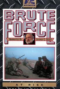 Brute Force: At Risk - Combat Camera
