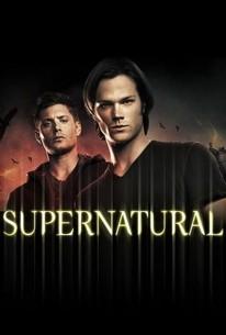 Supernatural Season 7 Rotten Tomatoes