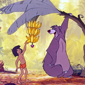 Jungle Book Quotes Stunning The Jungle Book  Movie Quotes  Rotten Tomatoes
