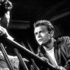 Rebel Without a Cause          Rotten Tomatoes
