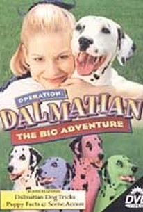 Operation Dalmation - The Big Adventure