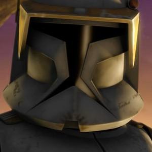 Clone Commander Cody is voiced by Dee Bradley Baker
