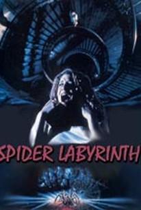 The Spider's Nest (Il nido del ragno)