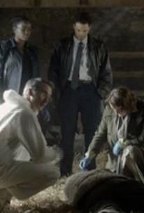 Vera - Season 1 Episode 3 - Rotten Tomatoes