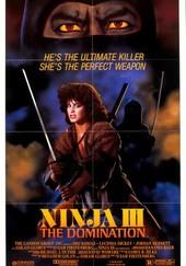Ninja III -- The Domination