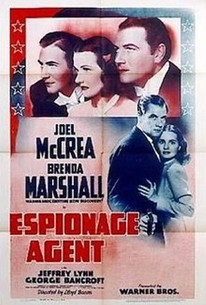 Espionage Agent