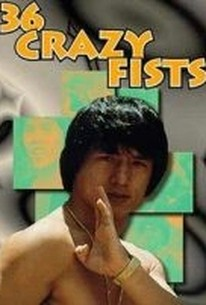 Jackie Chan's Bloodpact (San shi liu mi xing quan) (The 36 Crazy Fists) (Master and the Boxer)