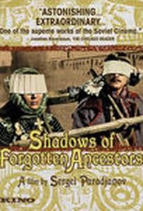 Shadows of Forgotten Ancestors (Tini zabutykh predkiv)