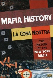 a look at the most popular crime organization the mafia 15 fascinating facts about the mafia  myth as the rest of the organization there are two popular theories  a look that could pass unnoticed in most any.