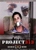 Project 313