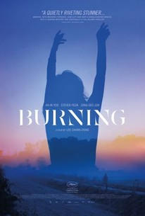 Burning Beoning 2018 Rotten Tomatoes