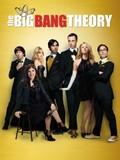 The Big Bang Theory: Season 8
