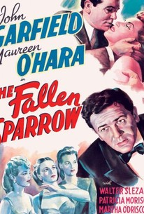 The Fallen Sparrow