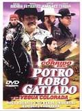 El Corrido del Potro Lobo Gatiado y La Yegua Colorada