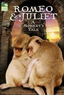 Romeo & Juliet: A Monkey's Tale