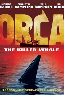 orca en streaming