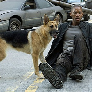 I Am Legend 2007 Rotten Tomatoes