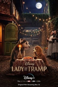 Lady And The Tramp 2019 Rotten Tomatoes