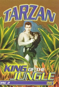Tarzan's New Adventure
