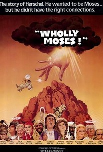 Wholly moses 1980 rotten tomatoes for Broadly farcical