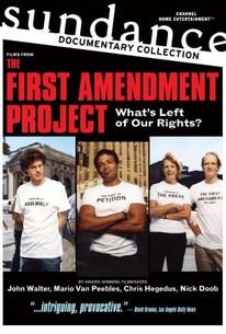 The First Amendment Project
