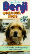 Benji in Benji Call Home