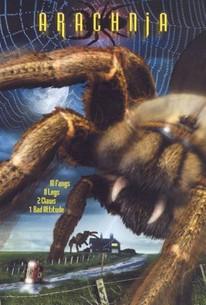 La Invasión de las Arañas