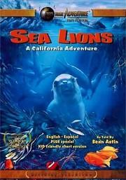 Sea Lions: A California Adventure