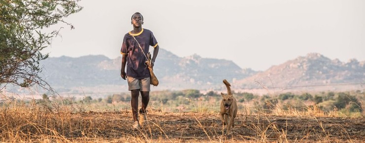 the boy who harnessed the wind cast