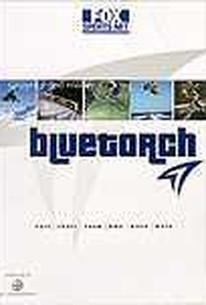 Bluetorch